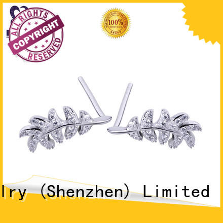 hook zircon earring women for business gift BEYALY